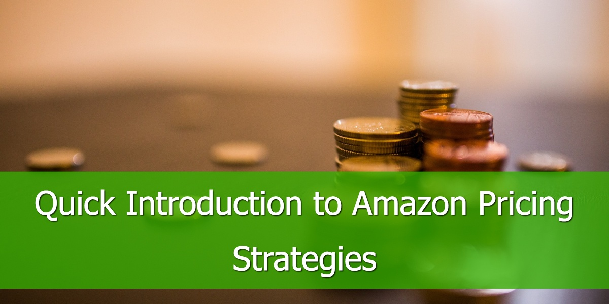 Quick Introduction to Amazon Pricing Strategies